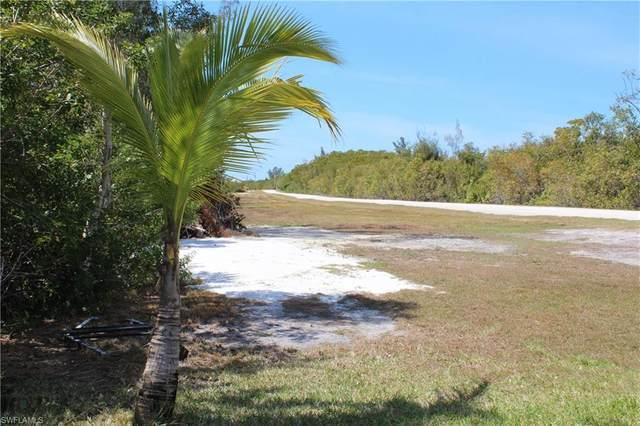 2785 Cussell Drive, St. James City, FL 33956 (#220018562) :: Caine Premier Properties
