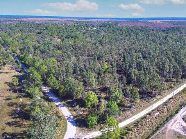Quail Run, Labelle, FL 33935 (MLS #221007738) :: #1 Real Estate Services