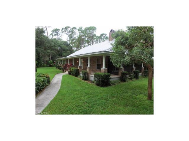18541 Telegraph Creek Ln, Alva, FL 33920 (MLS #217000248) :: The New Home Spot, Inc.
