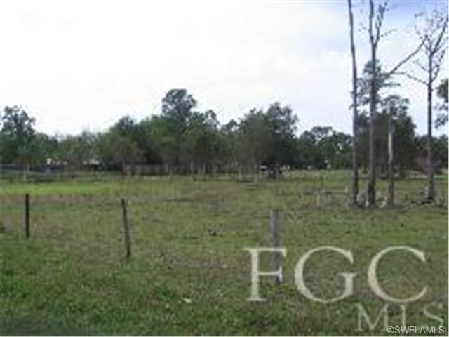 10440 Deer Run Farms Rd, Fort Myers, FL 33966 (MLS #200859913) :: RE/MAX Realty Team
