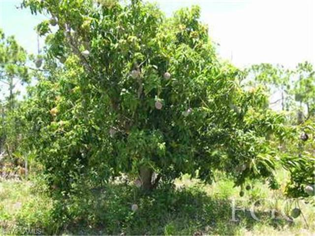 13171 Samadani Ln, Bokeelia, FL 33922 (#201000956) :: Homes and Land Brokers, Inc