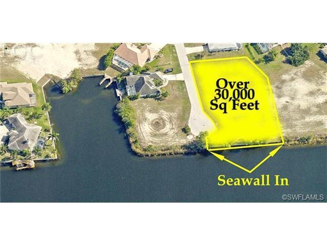 2926 SW 27th St, Cape Coral, FL 33914 (MLS #201333347) :: The New Home Spot, Inc.