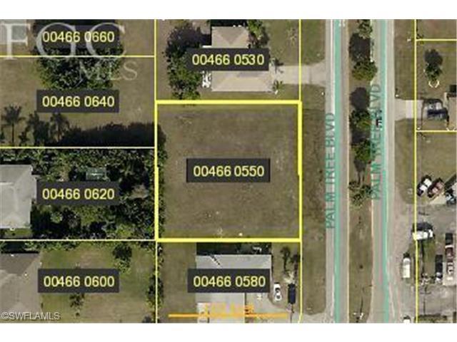 3932 Palm Tree Blvd, Cape Coral, FL 33904 (MLS #201343726) :: The New Home Spot, Inc.
