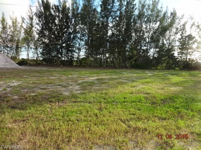 906 SW 23rd St, Cape Coral, FL 33991 (MLS #214022479) :: The New Home Spot, Inc.