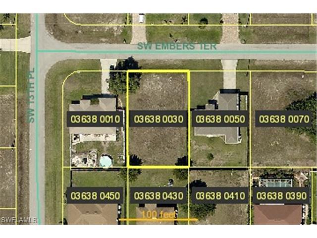 1306 SW Embers Ter, Cape Coral, FL 33991 (MLS #214039654) :: The New Home Spot, Inc.