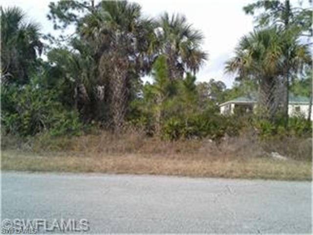 802 W 9th St, Lehigh Acres, FL 33972 (#215006856) :: Homes and Land Brokers, Inc
