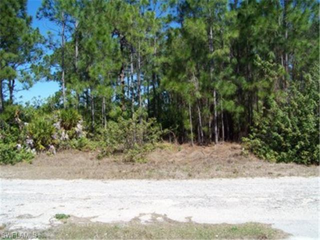 3618 5TH St SW, Lehigh Acres, FL 33976 (MLS #215011170) :: The New Home Spot, Inc.