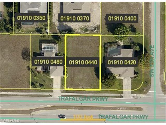 507 SW Trafalgar Pky, Cape Coral, FL 33991 (#215021757) :: Homes and Land Brokers, Inc