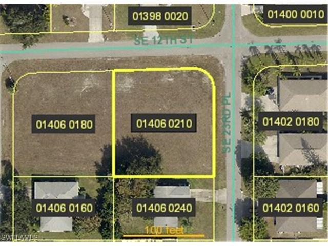1204 SE 23rd Pl, Cape Coral, FL 33990 (#215021875) :: Homes and Land Brokers, Inc
