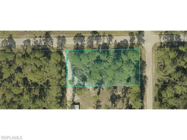 2023 Truman Ave, Alva, FL 33920 (MLS #215042315) :: The New Home Spot, Inc.
