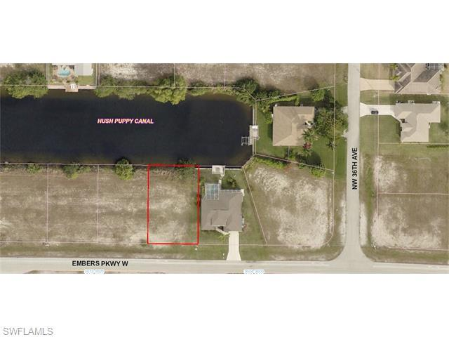 3613 Embers W, Cape Coral, FL 33993 (MLS #216000578) :: The New Home Spot, Inc.