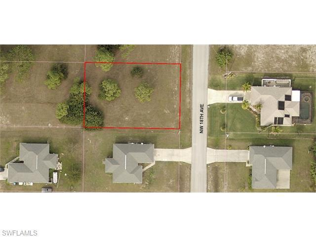 2534 NW 18th Ave, Cape Coral, FL 33993 (MLS #216000793) :: The New Home Spot, Inc.