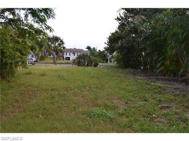 2356 Carambola Ln, St. James City, FL 33956 (MLS #216001966) :: The New Home Spot, Inc.