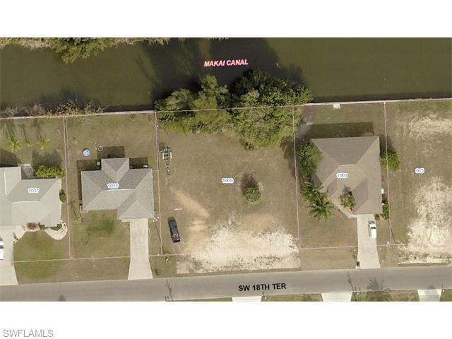 1009 SW 18th Ter, Cape Coral, FL 33991 (MLS #216008281) :: The New Home Spot, Inc.