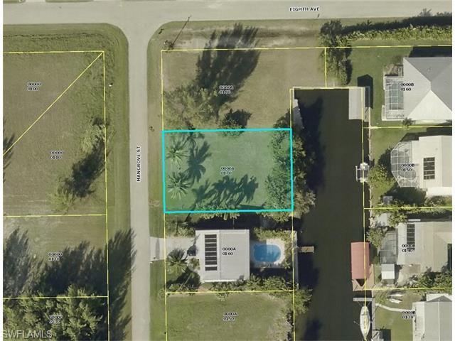2762 Mangrove St, St. James City, FL 33956 (MLS #216011762) :: The New Home Spot, Inc.