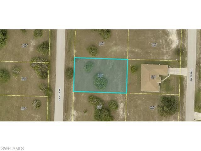 1209 NW 27th Ave, Cape Coral, FL 33993 (MLS #216023292) :: The New Home Spot, Inc.