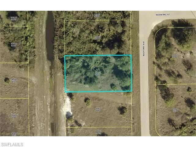 360 Radford Ave, Lehigh Acres, FL 33974 (#216024195) :: Homes and Land Brokers, Inc