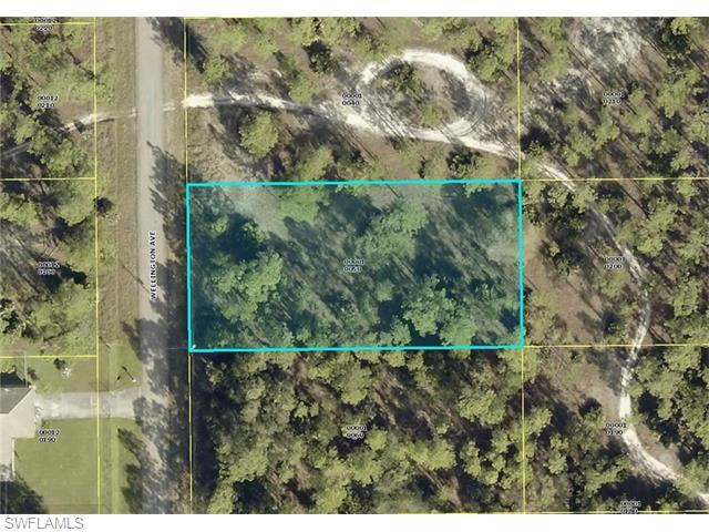 16 Wellington Ave, Lehigh Acres, FL 33936 (#216024543) :: Homes and Land Brokers, Inc