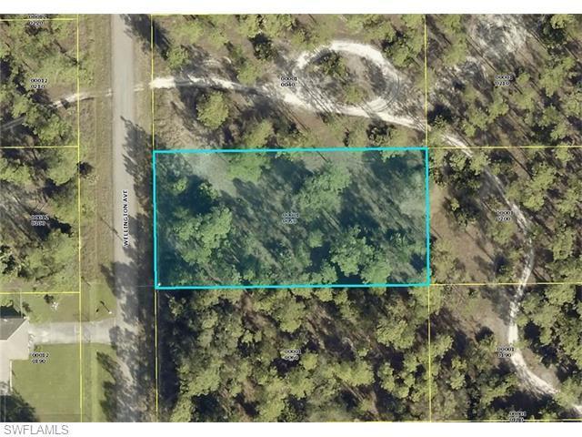 16 Wellington Ave, Lehigh Acres, FL 33936 (MLS #216024543) :: The New Home Spot, Inc.