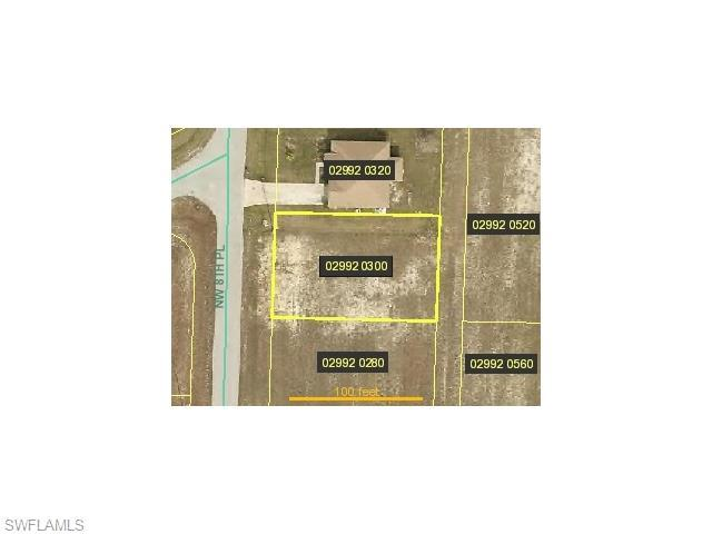 2935 NW 8th Pl, Cape Coral, FL 33993 (MLS #216028124) :: The New Home Spot, Inc.