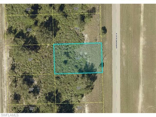6011 Sunshine Blvd N, Lehigh Acres, FL 33971 (#216029314) :: Homes and Land Brokers, Inc