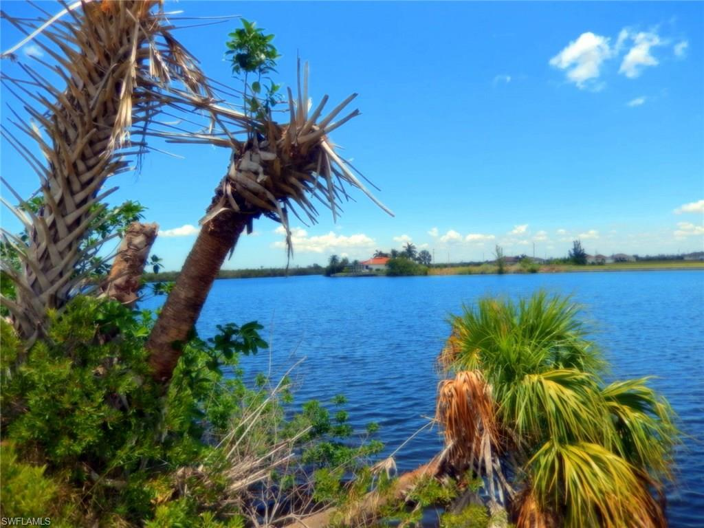 4619 NW 32nd Ter, Cape Coral, FL 33993 (MLS #216036724) :: The New Home Spot, Inc.