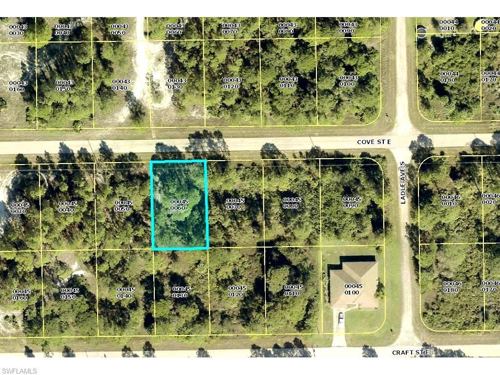 1116 Cove St E, Lehigh Acres, FL 33974 (MLS #216038747) :: The New Home Spot, Inc.