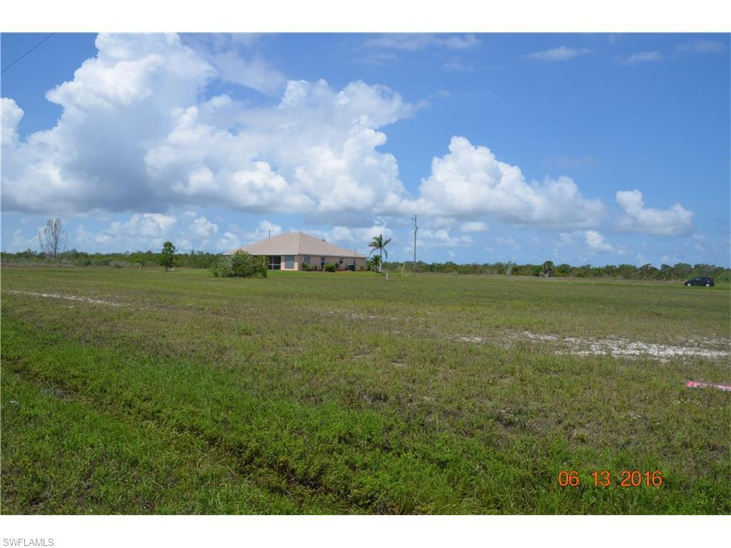 2830 NW 46TH Pl, Cape Coral, FL 33993 (MLS #216040018) :: The New Home Spot, Inc.