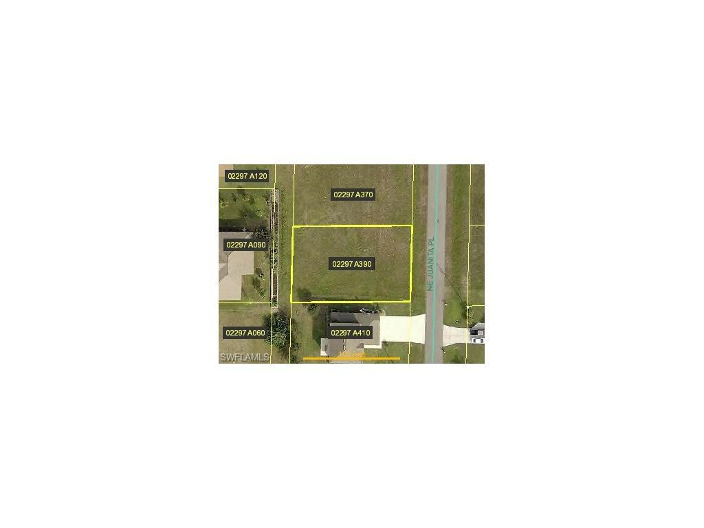 2500 NE Juanita Pl, Cape Coral, FL 33909 (MLS #216041567) :: The New Home Spot, Inc.