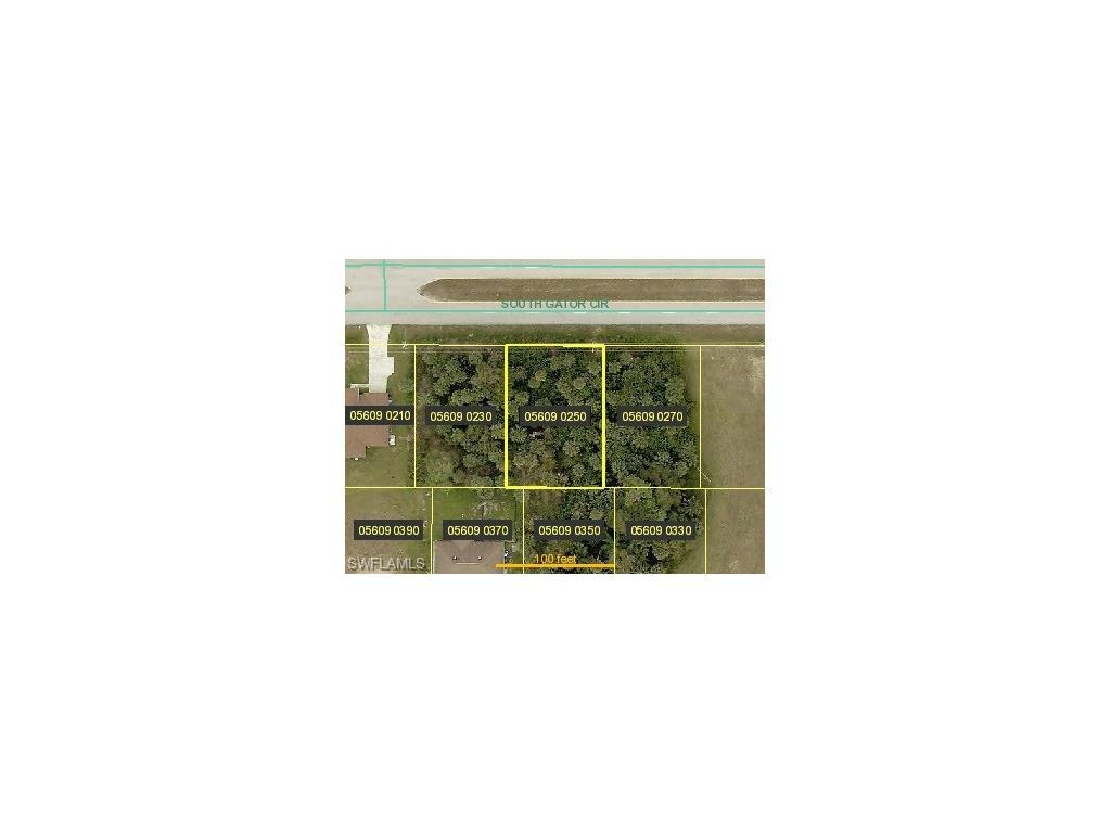 1404 S Gator Cir, Cape Coral, FL 33909 (#216041585) :: Homes and Land Brokers, Inc