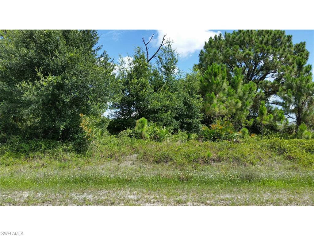 14061 Carlos St, Fort Myers, FL 33905 (#216043718) :: Homes and Land Brokers, Inc