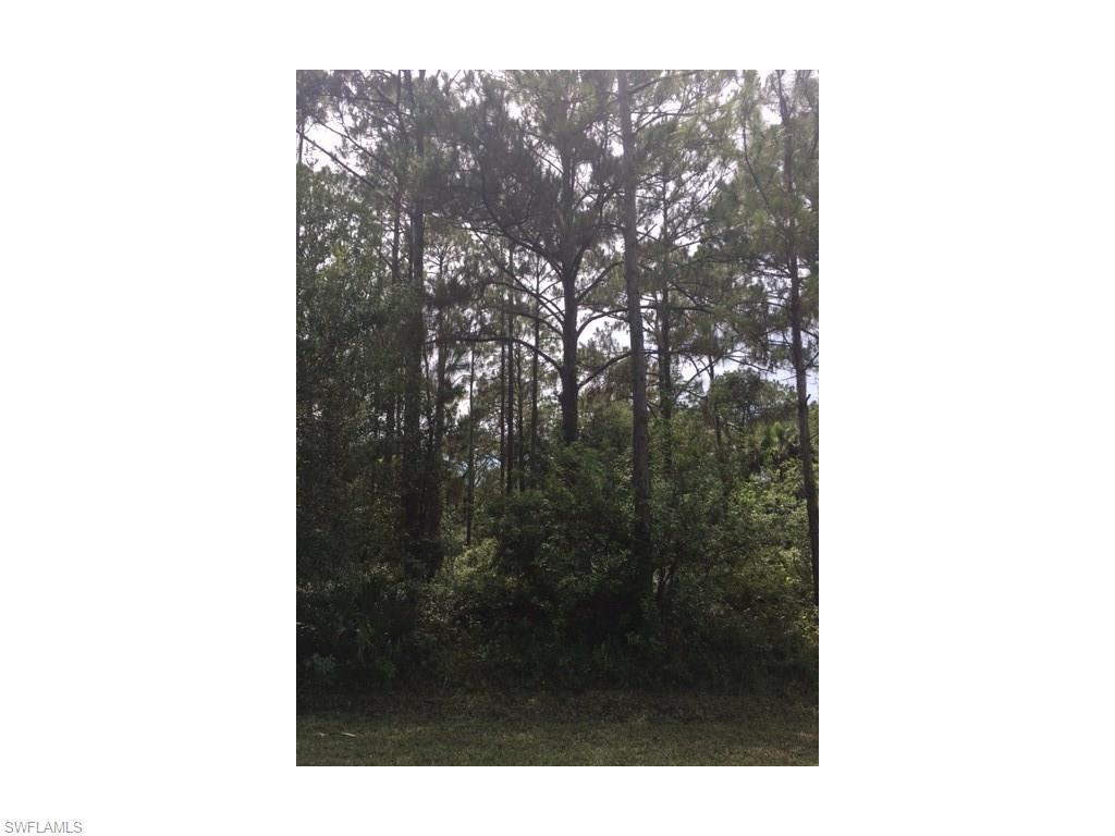 1415 Wellington Ave, Lehigh Acres, FL 33972 (MLS #216046284) :: The New Home Spot, Inc.