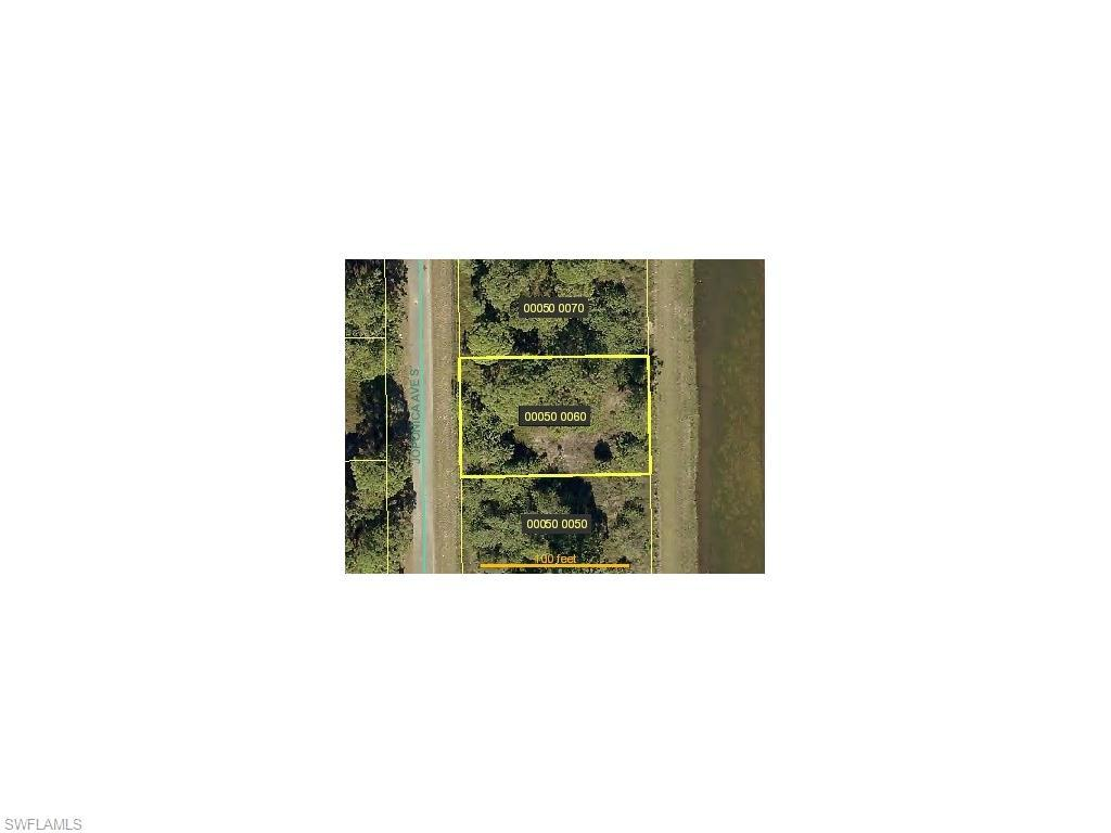 759 Joponica Ave S, Lehigh Acres, FL 33974 (MLS #216046338) :: The New Home Spot, Inc.