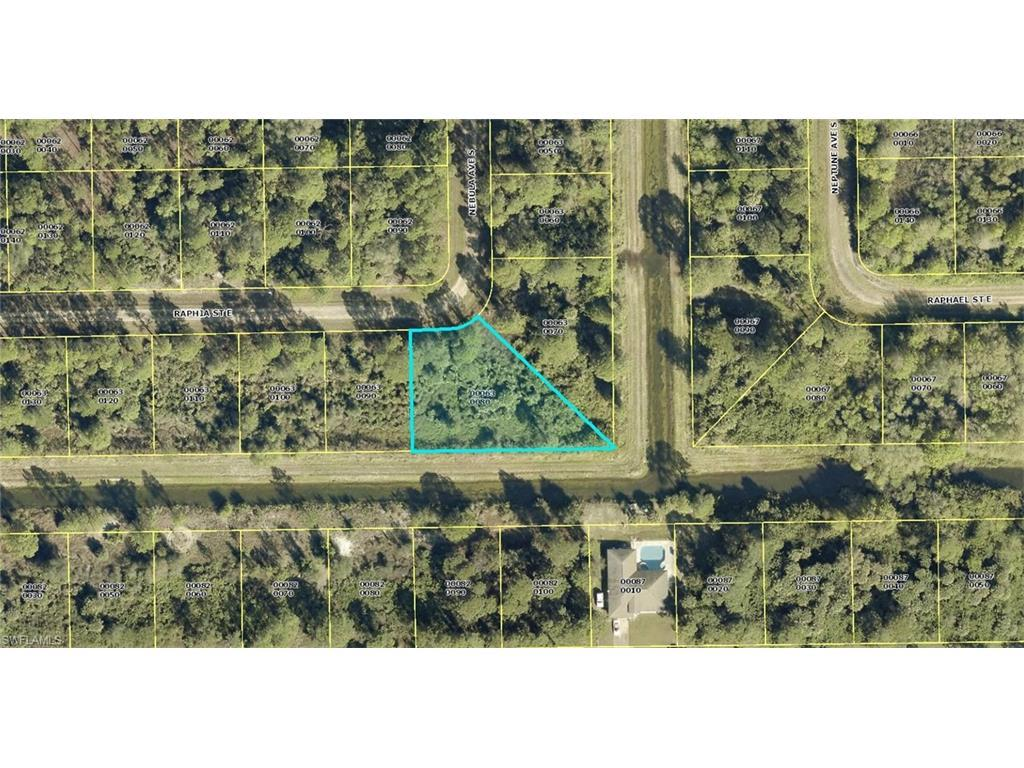 1224 Raphia St E, Lehigh Acres, FL 33974 (#216047962) :: Homes and Land Brokers, Inc