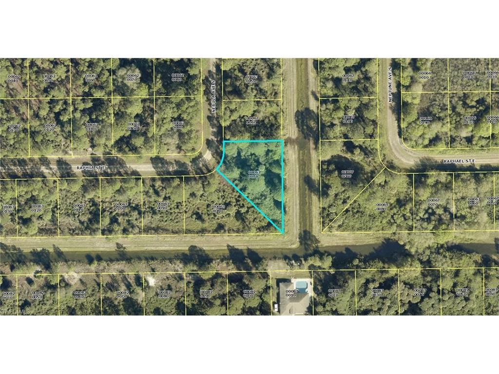 219 Nebula Ave S, Lehigh Acres, FL 33974 (MLS #216047966) :: The New Home Spot, Inc.