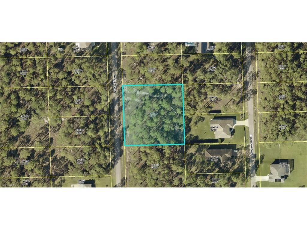 1116 Maple Ave N, Lehigh Acres, FL 33972 (MLS #216048236) :: The New Home Spot, Inc.