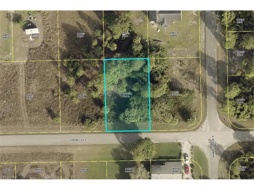 1151 Ebony St E, Lehigh Acres, FL 33974 (#216050900) :: Homes and Land Brokers, Inc