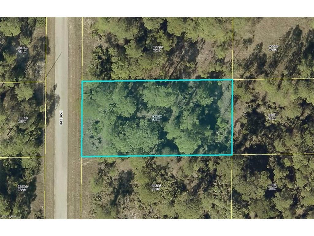 1420 Oak Ave, Lehigh Acres, FL 33972 (#216051239) :: Homes and Land Brokers, Inc