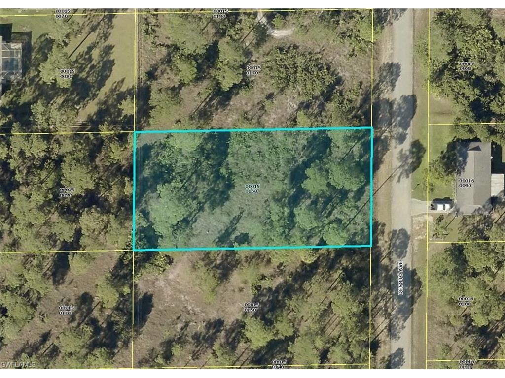 1307 Desoto Ave, Lehigh Acres, FL 33972 (MLS #216051753) :: The New Home Spot, Inc.