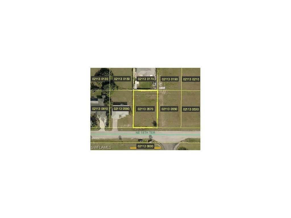 1117 NE 18th Ter, Cape Coral, FL 33909 (#216052632) :: Homes and Land Brokers, Inc