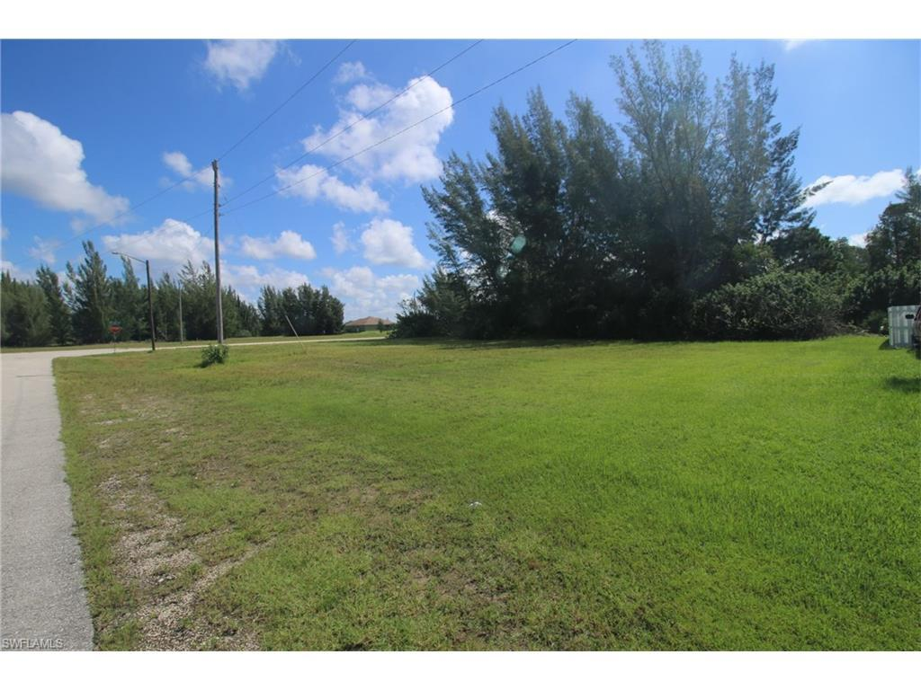 2317 NW 42nd Pl, Cape Coral, FL 33993 (MLS #216052967) :: The New Home Spot, Inc.