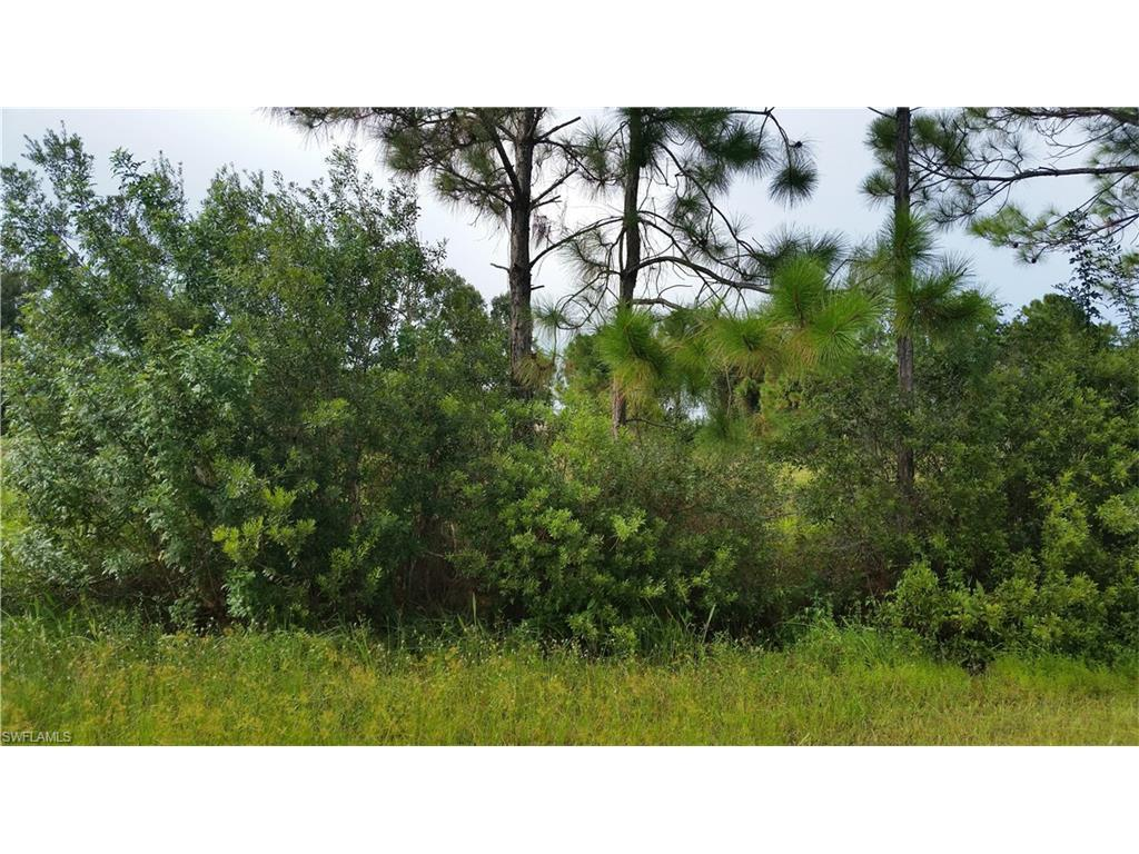 14211 Carberry St, Fort Myers, FL 33905 (MLS #216054116) :: The New Home Spot, Inc.