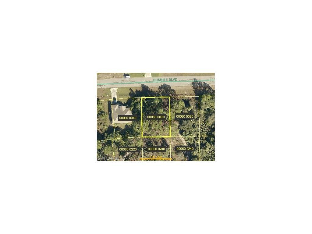 878 Sunrise Blvd, Lehigh Acres, FL 33974 (#216054233) :: Homes and Land Brokers, Inc
