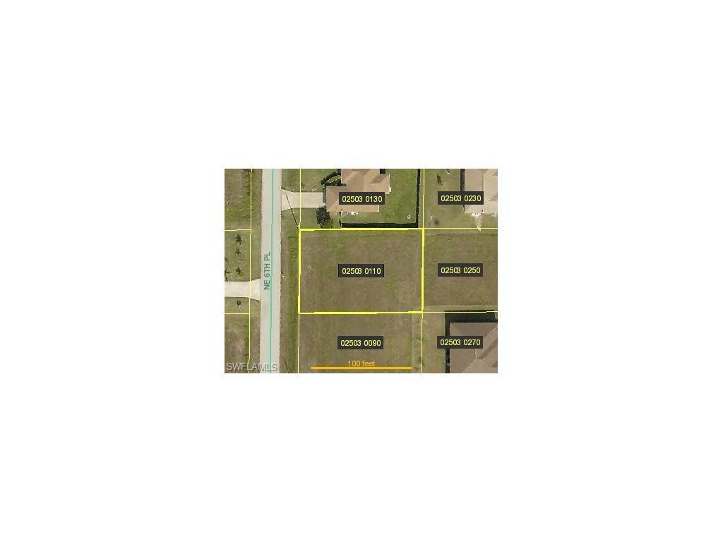 1901 NE 6th Pl, Cape Coral, FL 33909 (MLS #216054236) :: The New Home Spot, Inc.