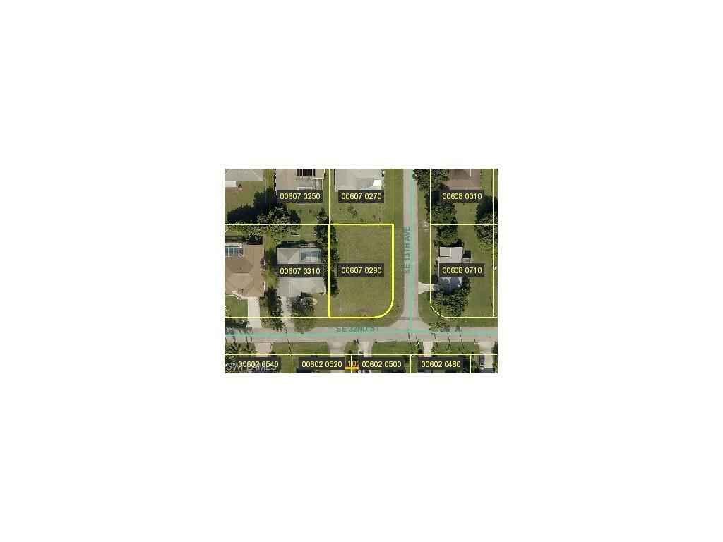 1217 SE 32nd St, Cape Coral, FL 33904 (MLS #216054976) :: The New Home Spot, Inc.