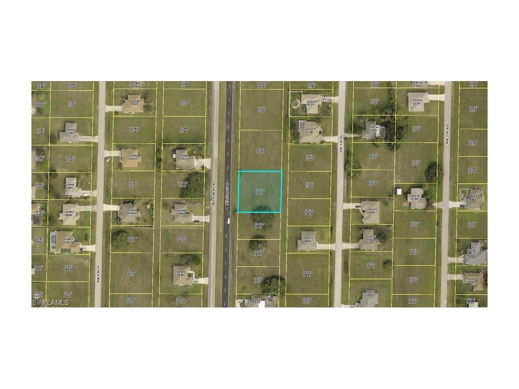 1155 Nelson Rd N, Cape Coral, FL 33993 (MLS #216055424) :: The New Home Spot, Inc.
