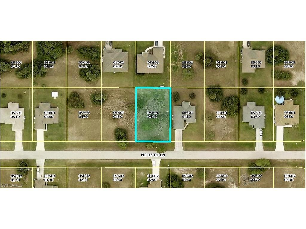 1615 NE 35th Ln, Cape Coral, FL 33909 (#216055493) :: Homes and Land Brokers, Inc
