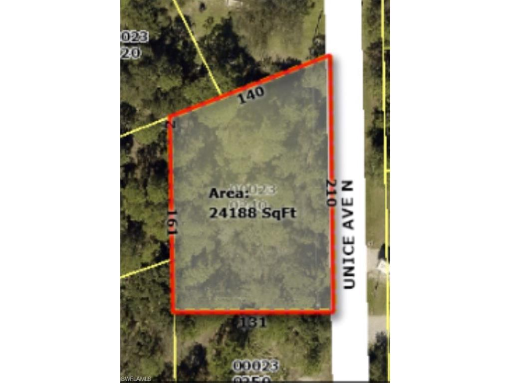 1739 Unice Ave N, Lehigh Acres, FL 33971 (MLS #216055786) :: The New Home Spot, Inc.