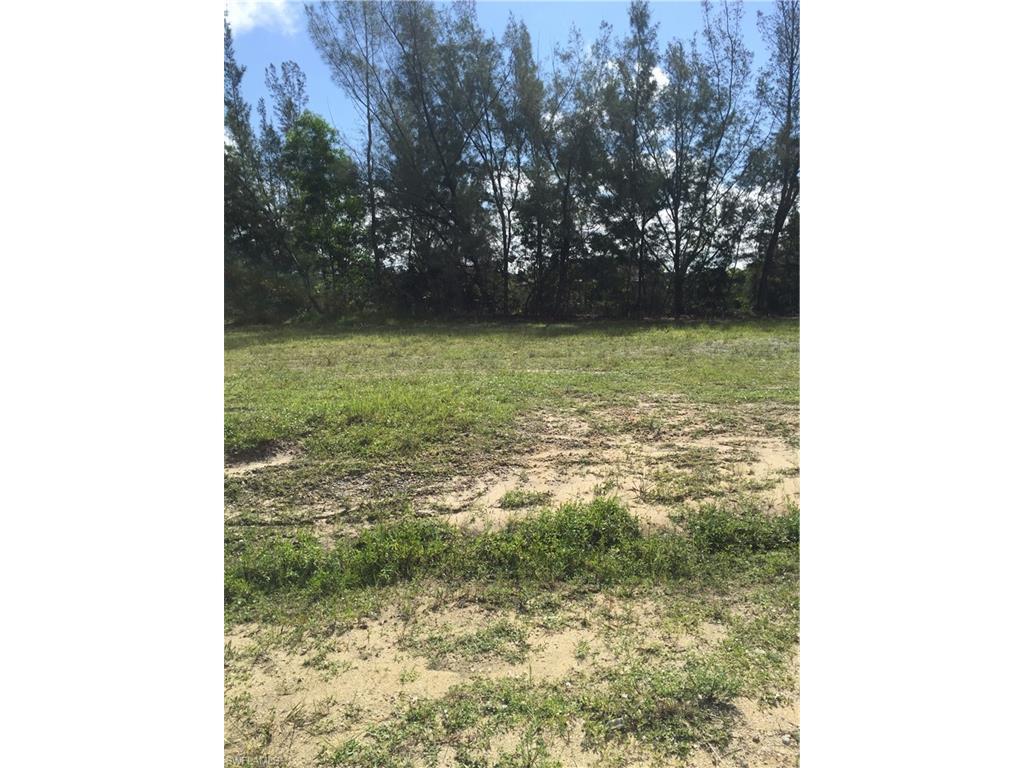 2123 SW 17th Pl, Cape Coral, FL 33991 (MLS #216055891) :: The New Home Spot, Inc.