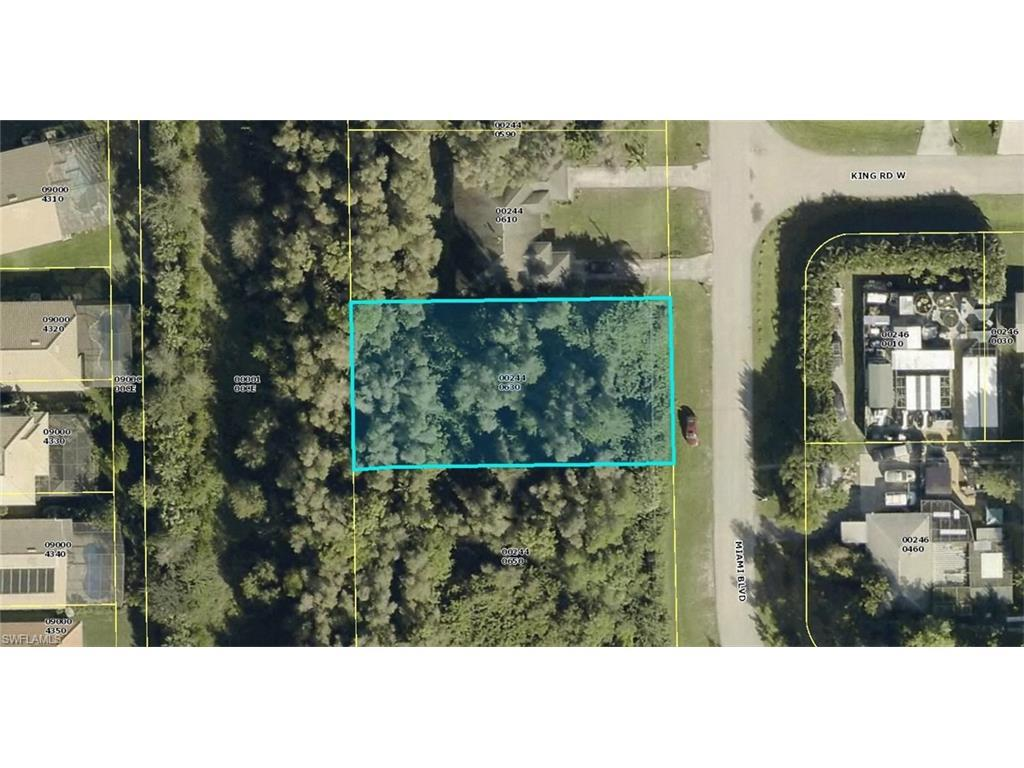 19224/228 Miami Blvd, Fort Myers, FL 33967 (#216055967) :: Homes and Land Brokers, Inc